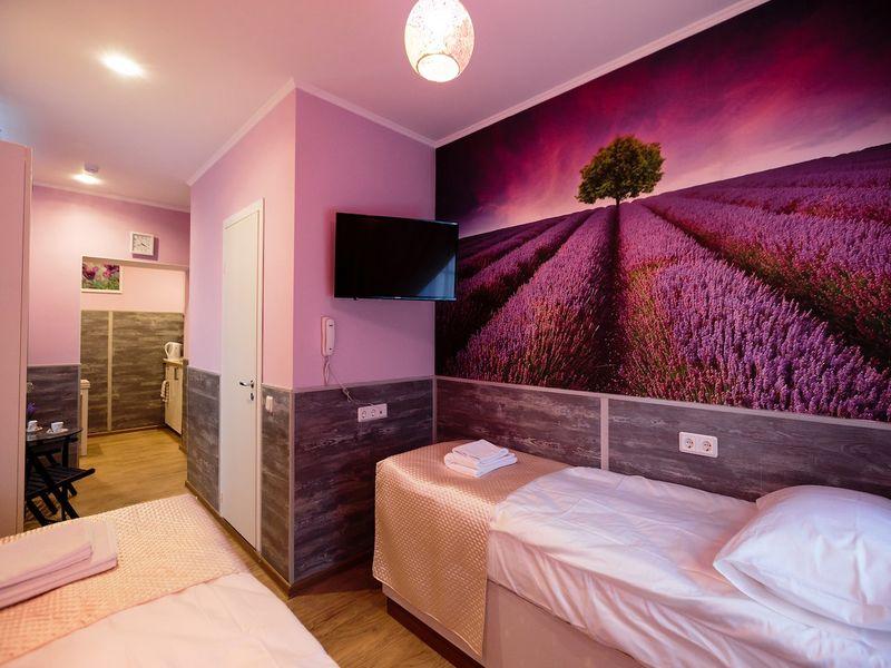 Отель Усадьба на Елизарова, категория улучшенный студио с двумя раздельными или с одной кроватью